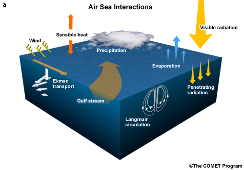 Schematic of general air-sea interactions involving transfer of momentum, heat, moisture, and radiation.