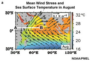 Mean wind stress at the ocean surface showing the low-level Somali Jet which results from the strong cross equatorial pressure gradient and the high terrain of East Africa.